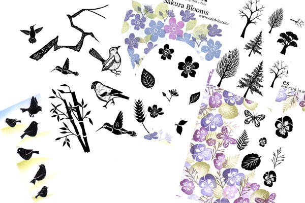 Birds and Blooms Collection